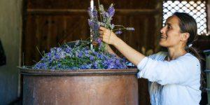Lavender's Many Benefits